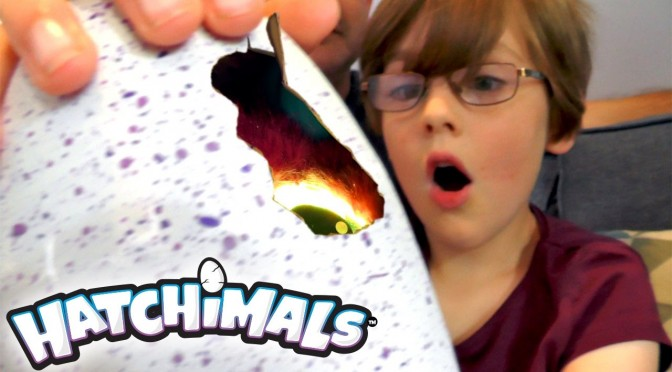 Hatchimals – Day 1 – Hatch Day Egg Surprise!