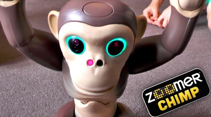 Zoomer Chimp – Day 2 – 100 Advanced Tricks and Phrases