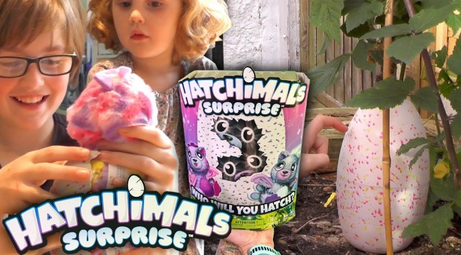 NEW! Hatchimals Surprise First Wild Hatching Peacat